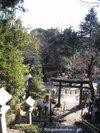 07ume_shishir0010390